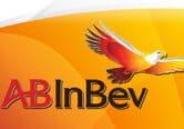 Ab Inbev interview directeur commercial