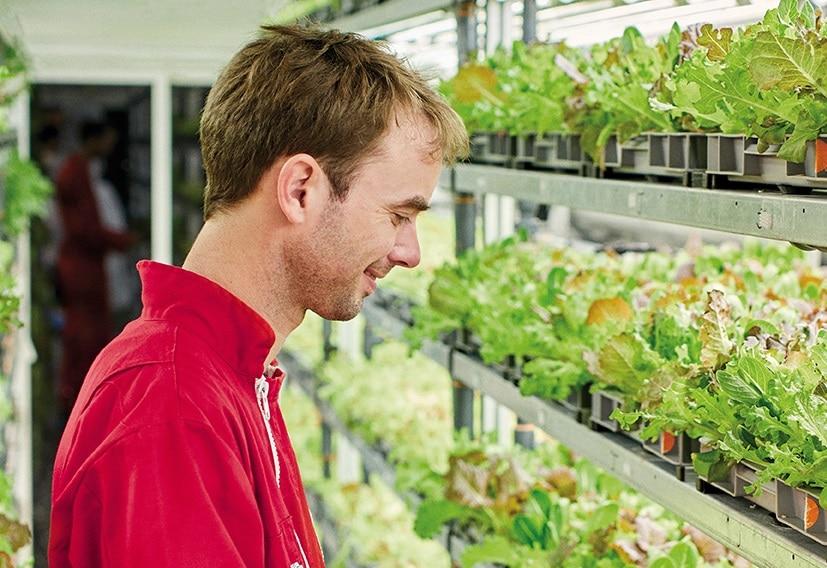 Monoprix a été le premier distributeur à accorder sa confiance à Agricool, l'entité dirigée par Guillaume Fourdinier