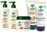 Arbre vert-novamex-nouveaux-produits