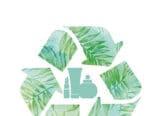 Les produits écologiques poursuivent leurs croissance